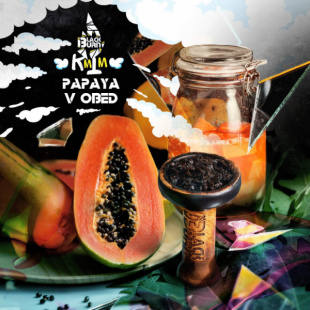 Купить Burn 100 гр - вкус Papaya v Obed (Папайя в Обед)
